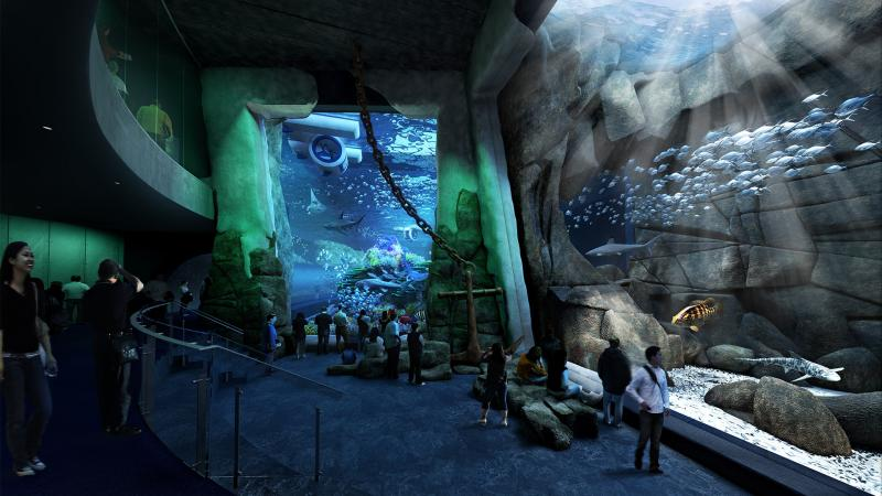 Cube Oceanarium Chengdu China Deep Sea