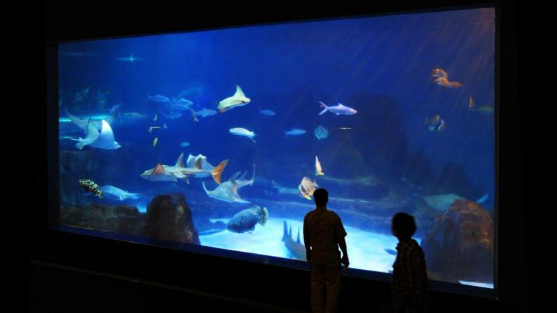 Hualien Farglory Ocean Park Photo