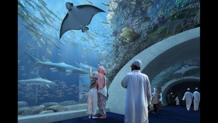 Aquarium of Oman Tunnel Visualisation