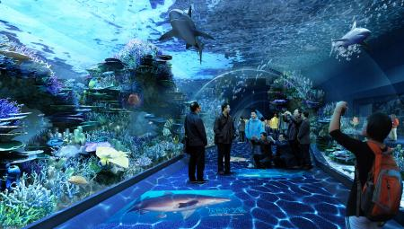 Cube Oceanarium Chengdu China Tunnel Render